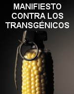 contra-transgenicos1