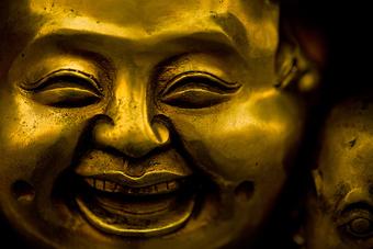 Resultado de imagen de La inteligencia inteligente es la que conduce a la felicidad